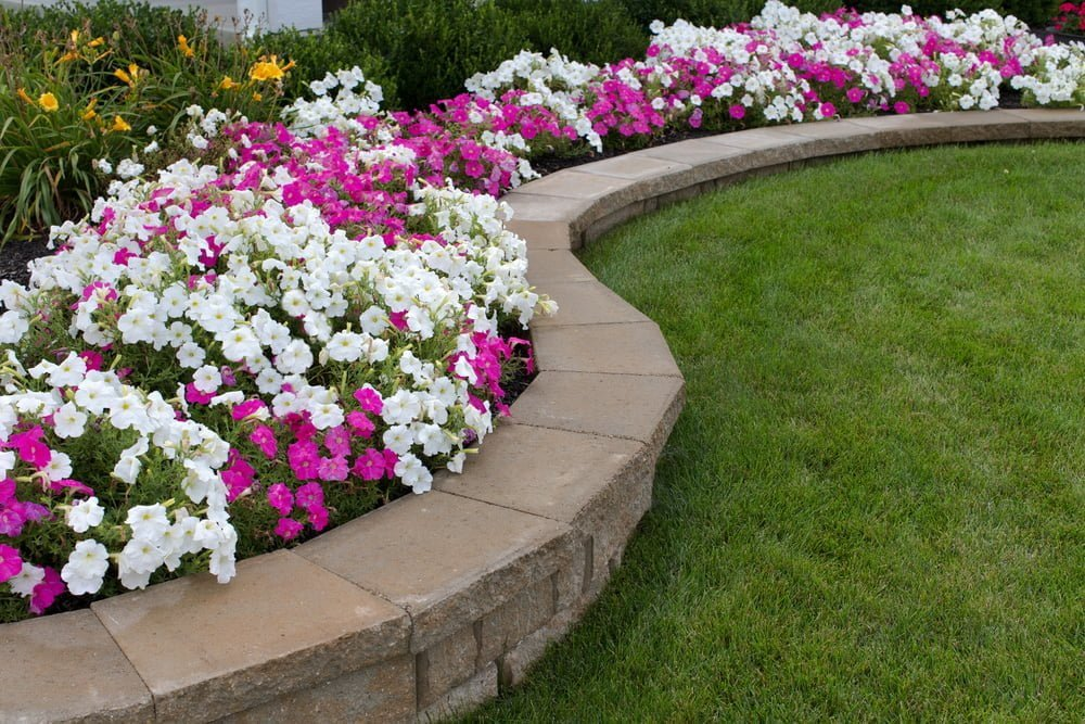 How To Design The Landscape Border Of