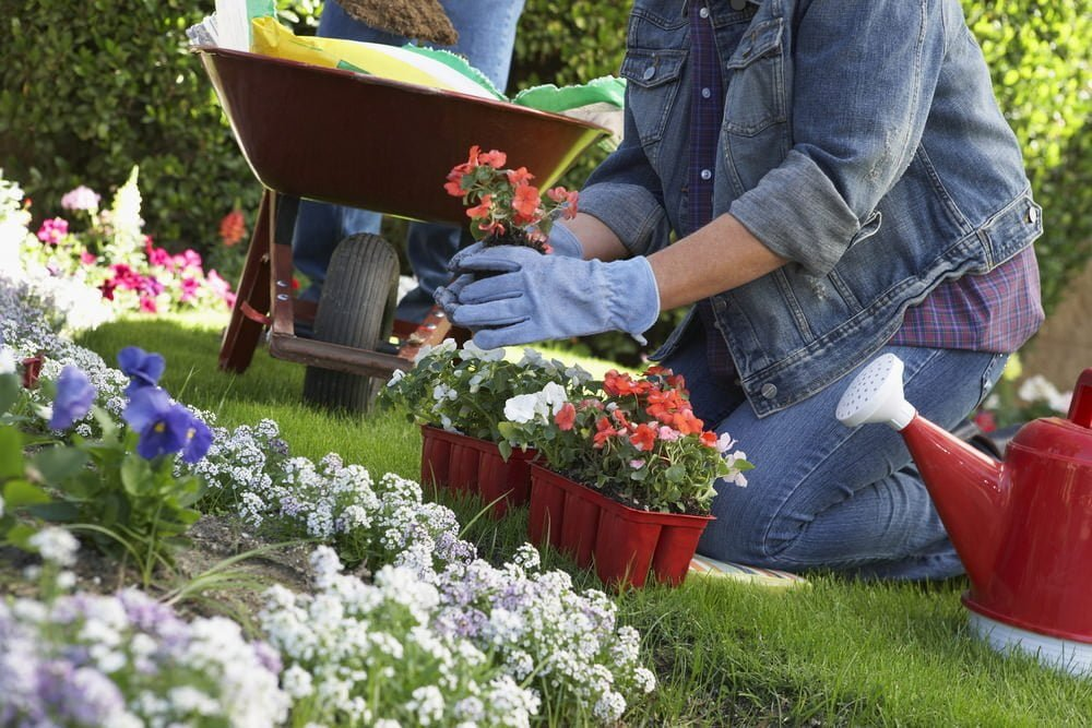 hot gardening trends for 2017