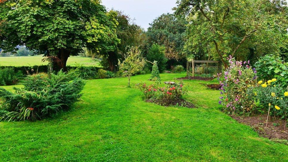 Millcreek gardens salt lake city ut garden ftempo for Garden city trees
