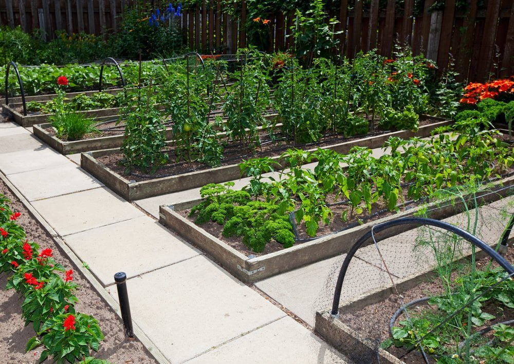 raised-bed-gardens-utah