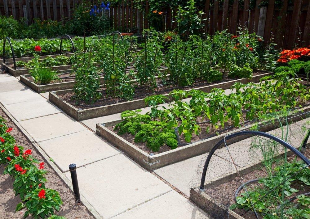 raised-bed-gardens-utah