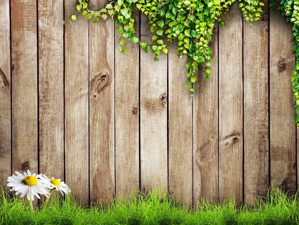 garden privacy wall
