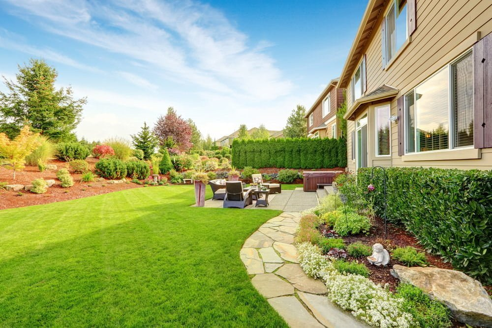 Landscaping Plants & Designs