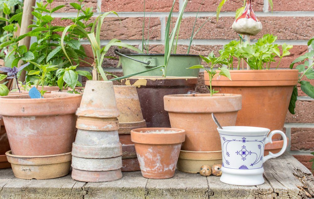 outdoor-plant-containers