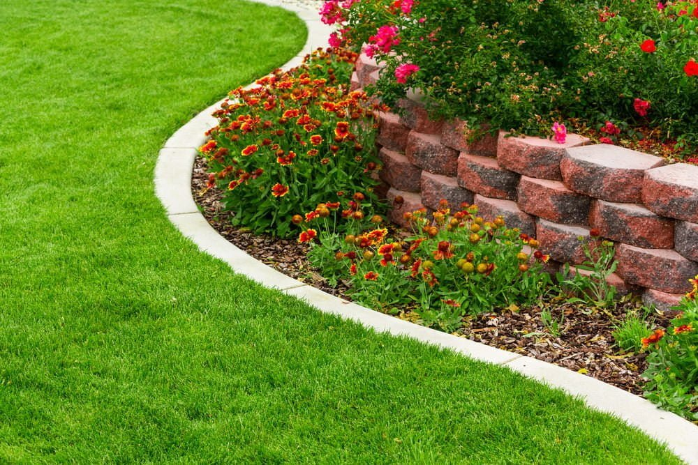 Garden Bed Edges