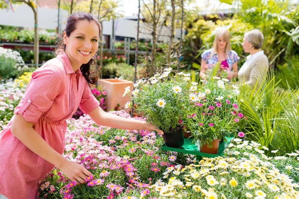 Secrets To Ping At A Plant Nursery