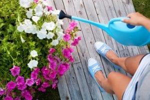 time-saving gardening tips