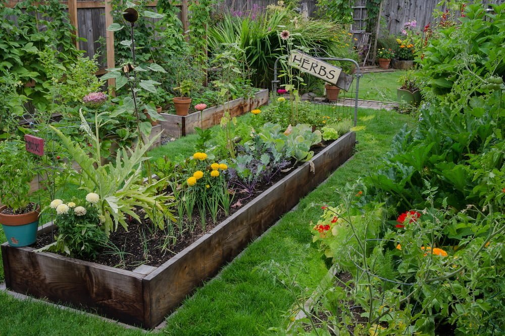 mobile raised bed garden from a shipping pallet