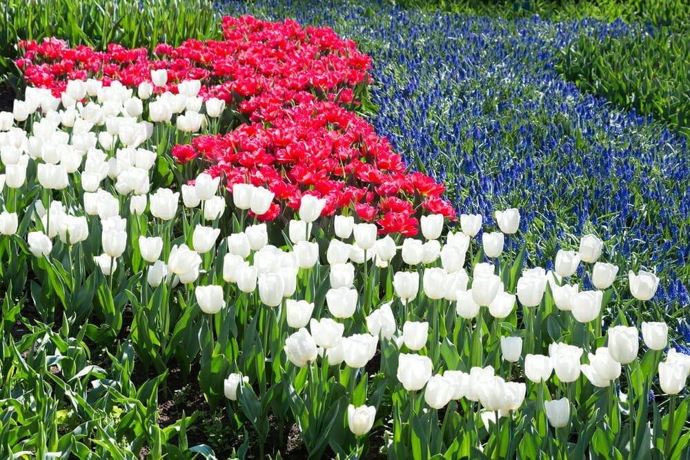 garden center calendar