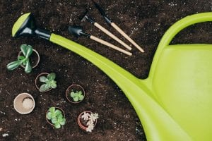 your utah gardening supplies and tools care guide