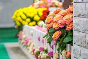 Caring for Rose BushesDuring theNorthern UtahSummer