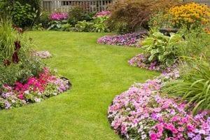 Salt Lake CityGarden Center Calendar August Gardening Tasks