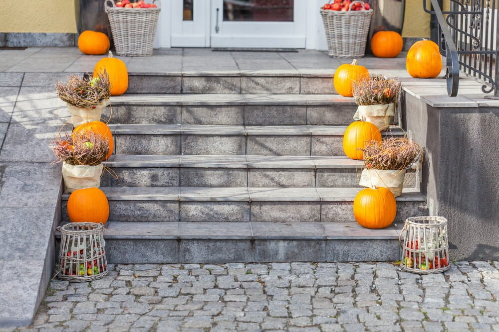 Plant Nursery Halloween
