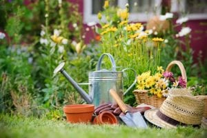 september-gardening-tasks