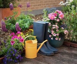organize gardening supplies