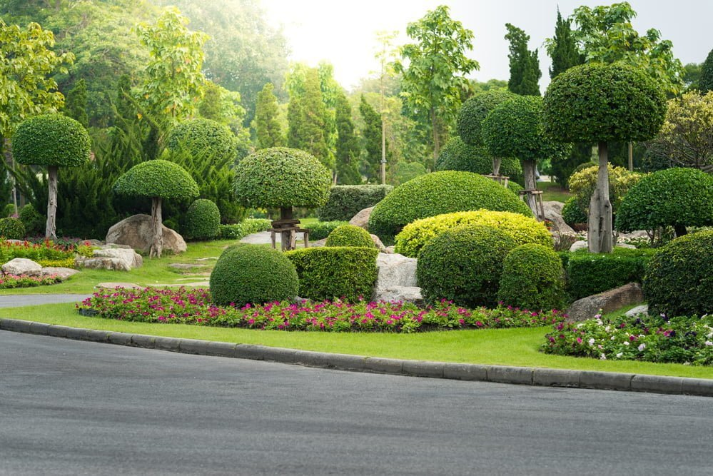 Top 10 Landscaping Trees For Fabulous Fall Color Millcreek Gardens