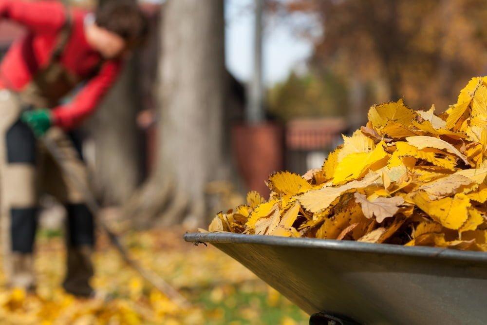 november gardening utah