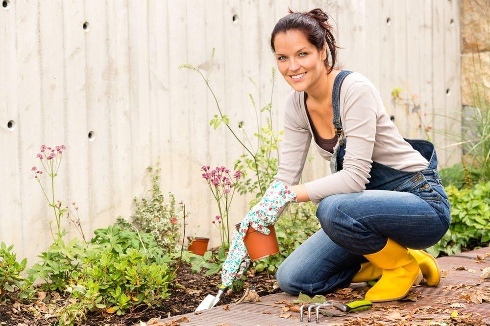 Plant nursery gardening tips