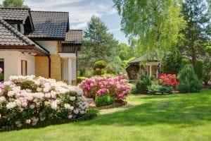 Garden center guide for pruning flowering shrubs