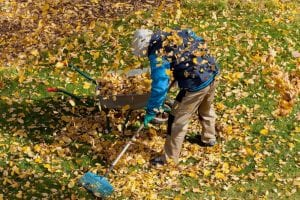 Spring garden cleanup checklist