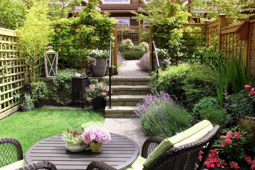 How to use lattice for outdoor plants
