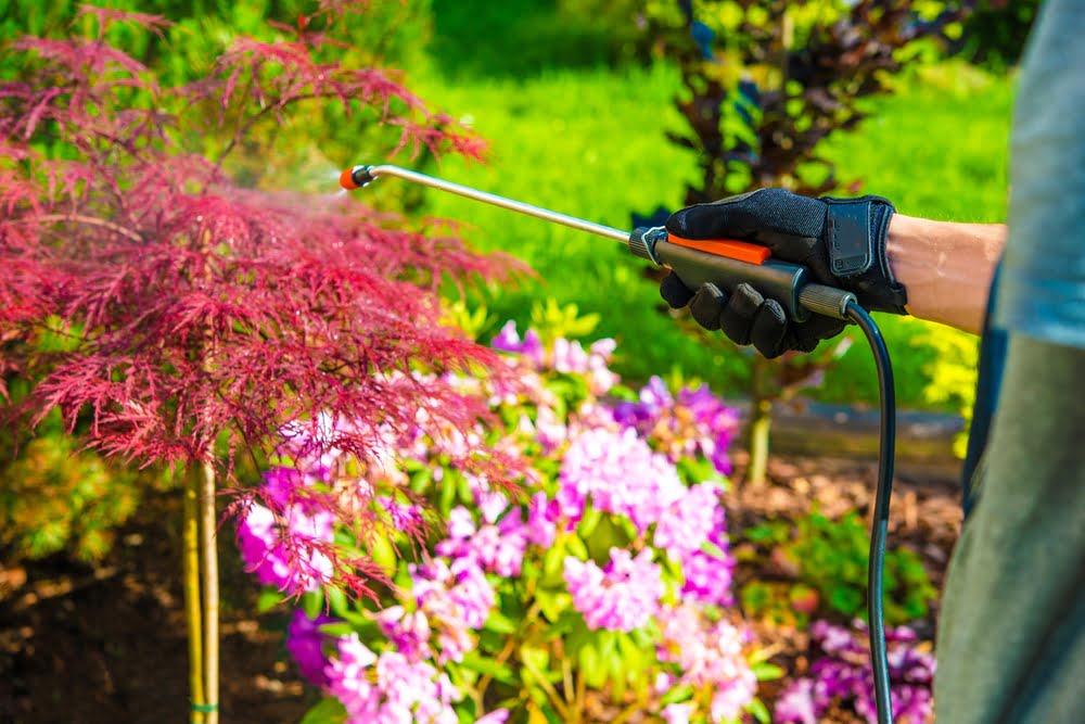 spring garden was prevention tips